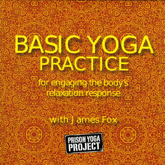 Basic Yoga Practice for Engaging the Body's Relaxation Response (DVD)