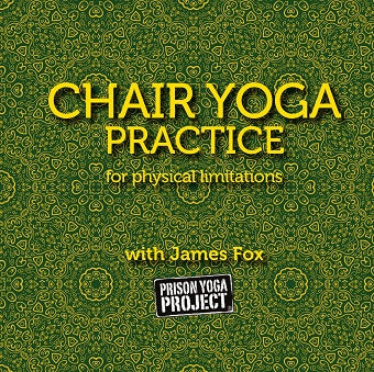Chair Yoga Practice with James Fox (Download)