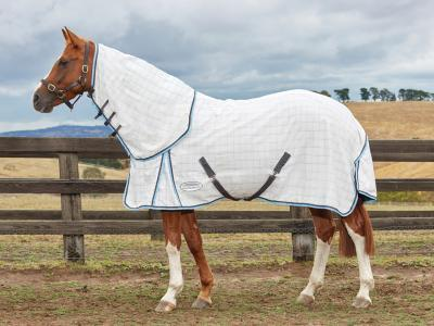 Weatherbeeta Summer Sheet Cotton Combo