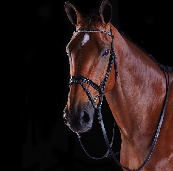 Collegiate Multi Crystal Crank Bridle