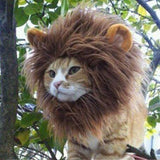 Majestic Lion Mane Wig for Cats