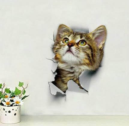 Highly Realistic 3D Cat Wall Stickers