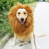 Majestic Lion Mane Wig for Dogs