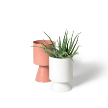 Palm Springs Planter Small - Clay