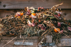 How to choose the right compost solution for your household