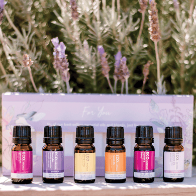 Self Care Essential Oil 6-Pack