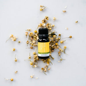 ECO. Aroma Chamomile 3% (German) Essential Oil 10ml