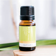 Citronella Pure Essential Oil