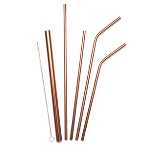 Stainless Steel Straw Set of 5 (Multiple Colours)