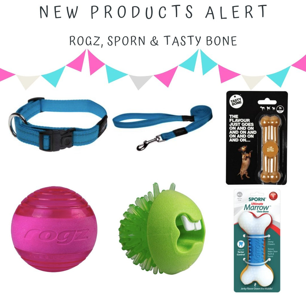 New Products Alert | Summers Pet Accessories