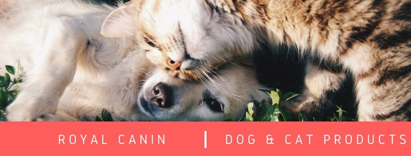 Royal Canin has arrived! | Summers Pet Accessories