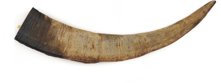 Air Dried Goat Horn