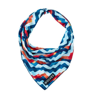 Maverick Mesh Bandana - Summers Pet Accessories