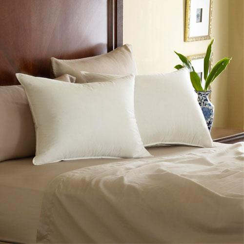 Pacific Coast  Feather Pillows - Price Per Case