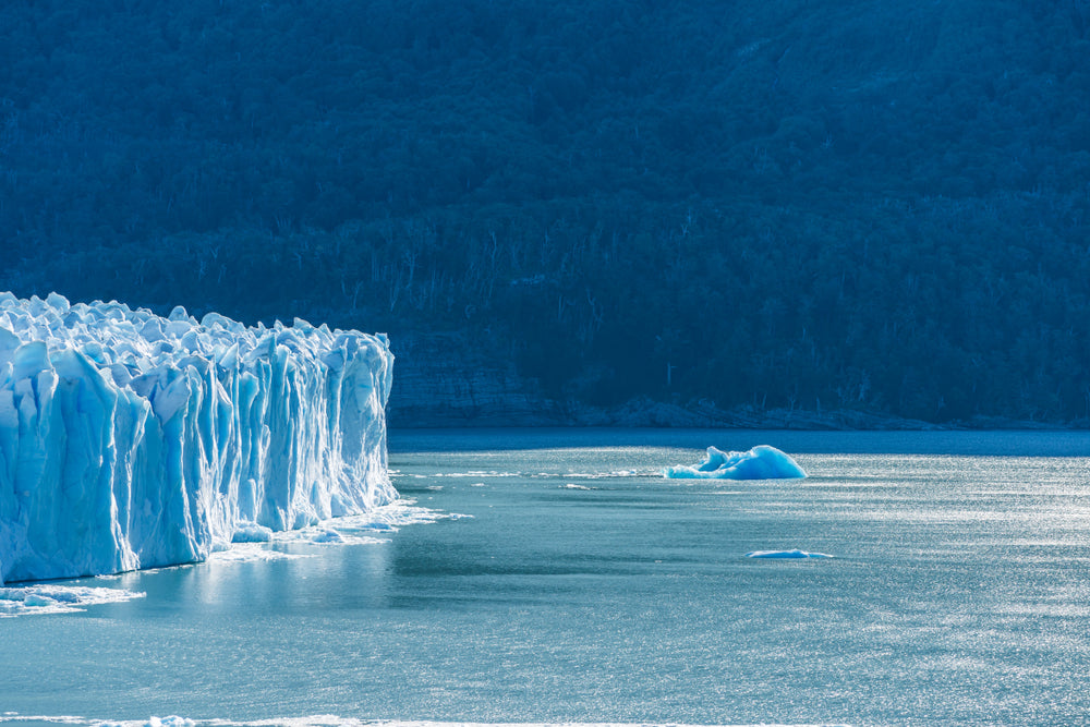Melting Icebergs and the Rising Sea: A Disaster In The Making