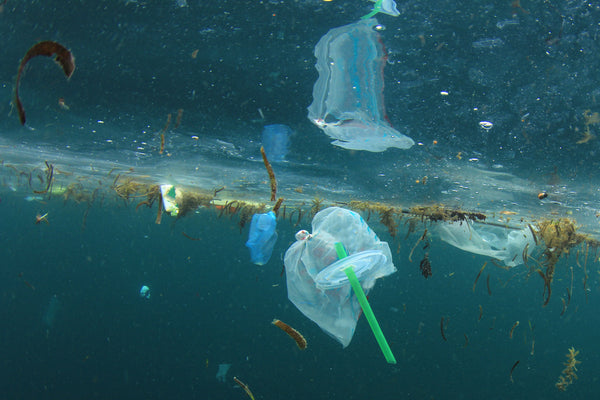 How to reduce plastics in the ocean