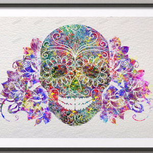 Colorful Skull Picture