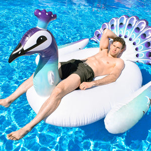 bouee geante peacock paon piscine homme