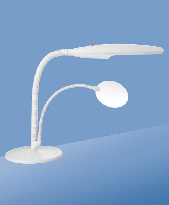 European Eyewear Table Top Lamp