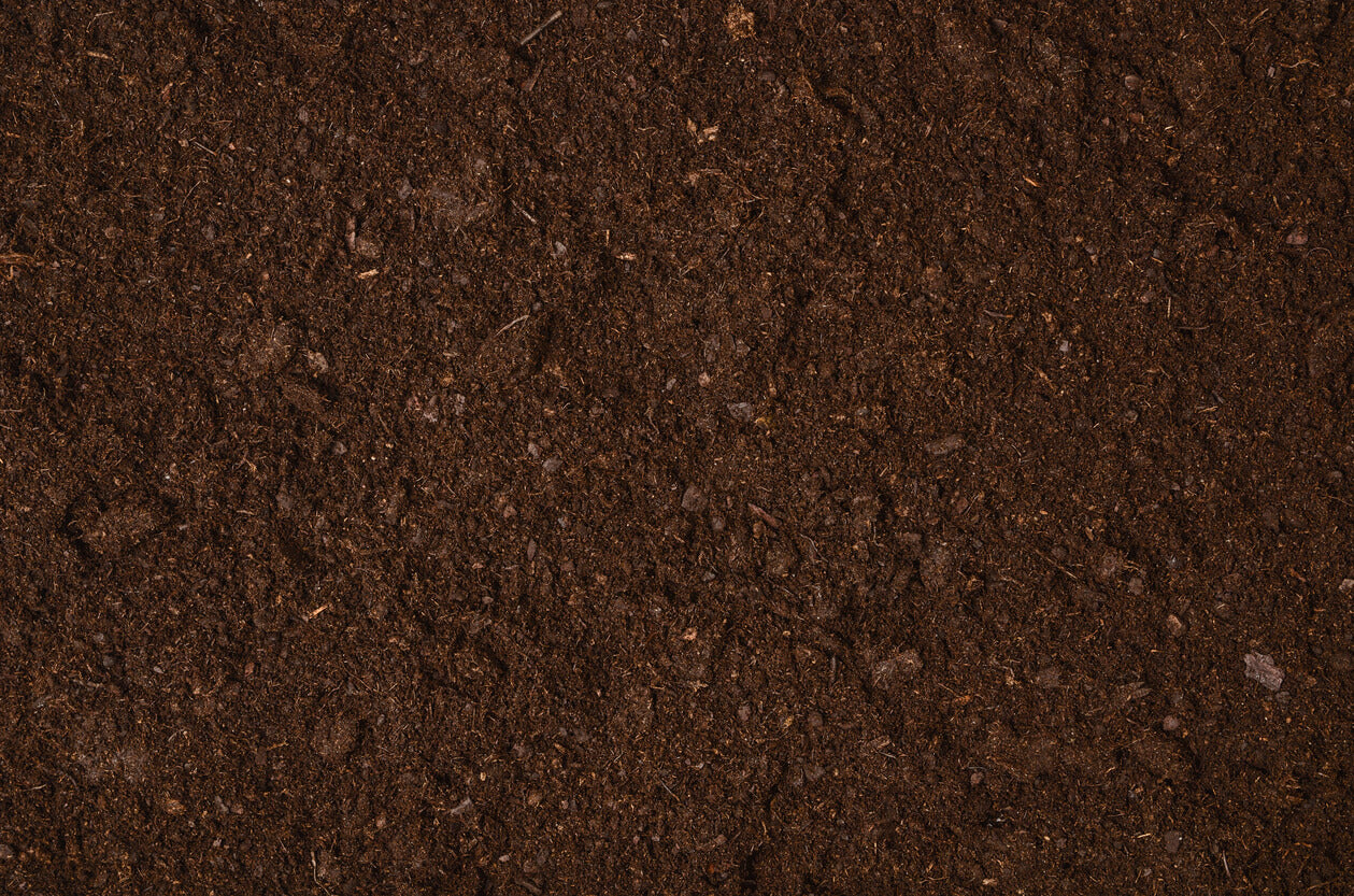 Soil depletion, and why we need vitamins more than ever