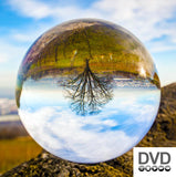 Psychic Ability DVD