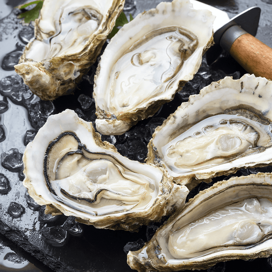 Not specified General 6 Wild Oysters