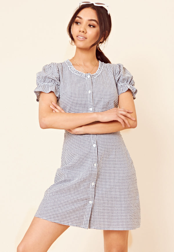 Gingham Skater Dress <br> Navy