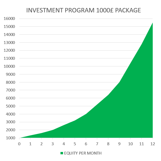 INVESTMENT 1000 £ PACKAGE