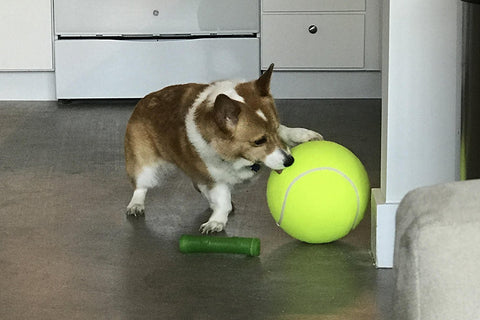 Giant Fun Tennis Ball For Pets