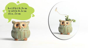 Owl Ceramic Flower Pots (5PC/set)