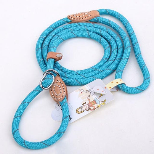 Lead Leash & Collar
