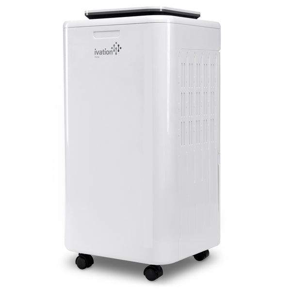 11 Pint Small-Area Compressor Dehumidifier