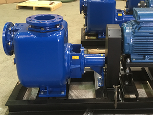 Varisco self priming pump by Pumpsets Ltd