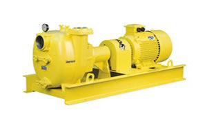 yellow long coupled pump