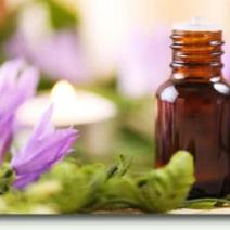 Aromatherapy Modules 1, 2 & 3 Community or LMT CE Class (Wednesdays 8 Week Class, Day or Eve) 24 Hours
