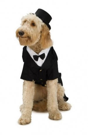 Rubies Pet Shop Dapper Dog Pet Halloween Costume