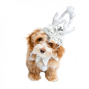 Pet Krewe Christmas Frozen Antler Silver Dog Costume