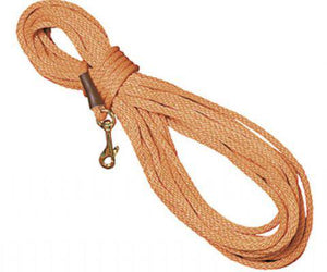 30 Foot Pro-Trainer Leash