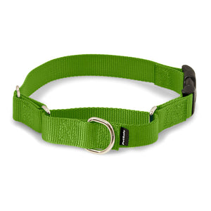 PetSafe Premier Martingale Green Apple Quick Snap / Buckle Martingale Pet Collar