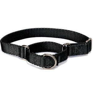 PetSafe Premier Martingale Black Pet Collar