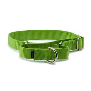 PetSafe Premier Martingale Green Apple Pet Collar