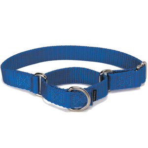PetSafe Premier Martingale Royal Blue Pet Collar