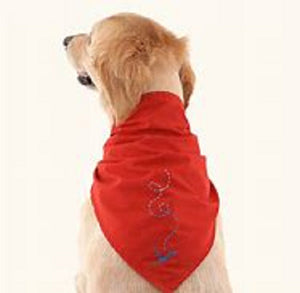 Doggles Insect Shield Bandana