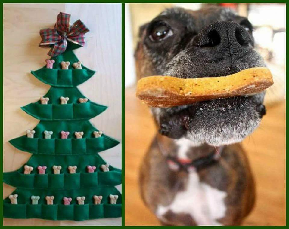 Doggie Christmas Countdown Calendars