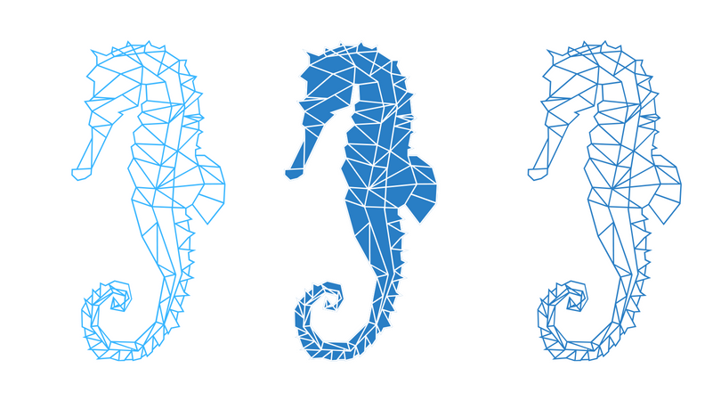 The Seahorse, the genius fish