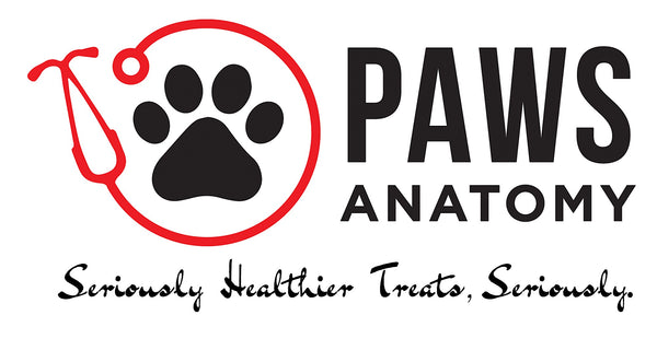 Paws Anatomy