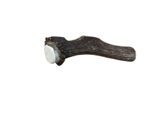 Load image into Gallery viewer, Elk Antler - Full