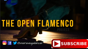 Welcome to the Open Flamenco Project