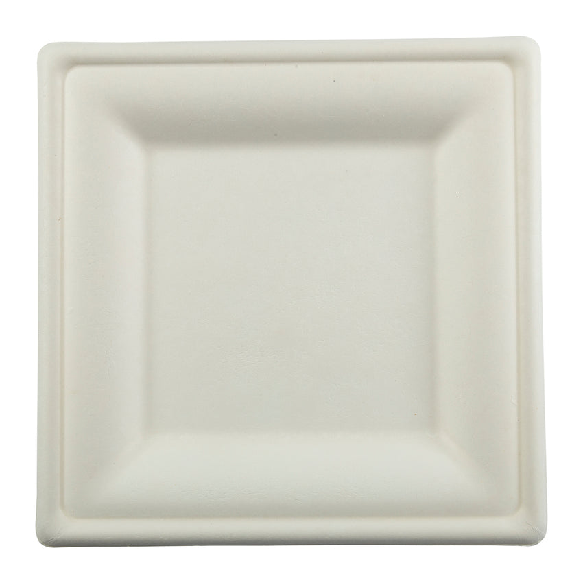 "DP-10 - 10"" Square Heavy Molded Fiber Plates Sample"