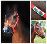 Quality Welsh Flag Adjustable Head Collar